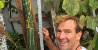 Kelowna男子種出113厘米全世界最長青瓜