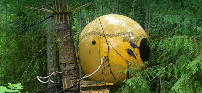 8个BC省内的树屋!尝试童话故事里的生活吧